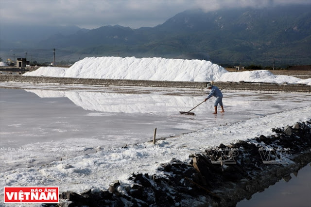 Salt Fields in Hon Khoi