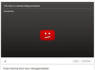 video-processed