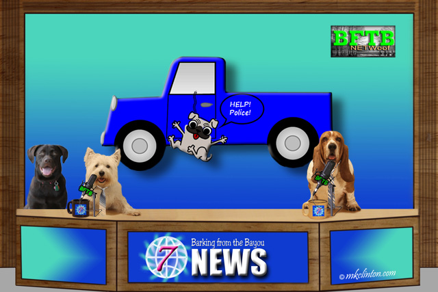 BFTB NETWoof Dogs news with dog hanging from truck story on backdrop