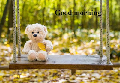 Good morning sunshine teddy bear images - good morning nature images