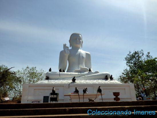 Buda Mihintale