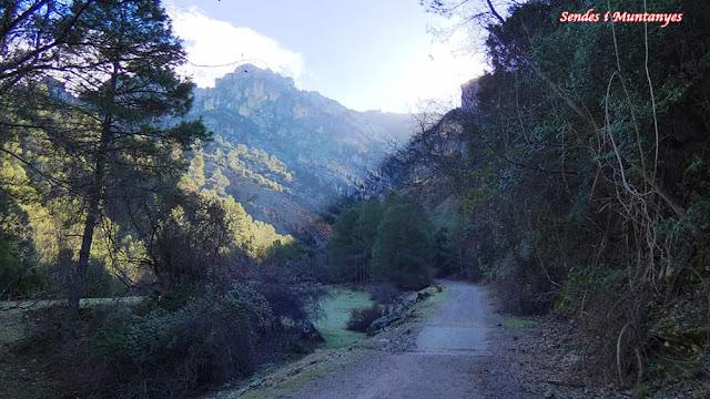 Pista forestal, Nacimiento río Borosa, Pontones, Sierra de Cazorla, Jaén, Andalucía