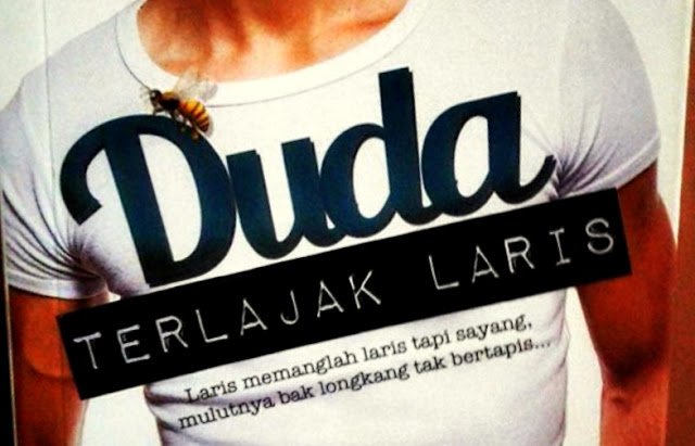 Novel Duda Terlajak Laris