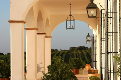 RUTAS DEL VINO: Visitas a las Bodegas Viña Santa Marina 1