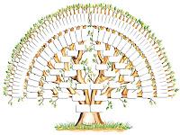 Boş soy ağacı şablonu
