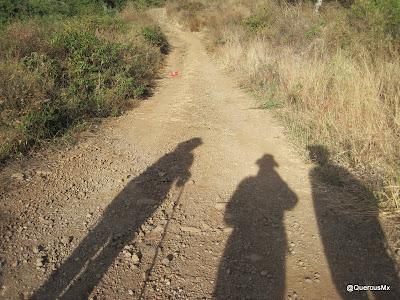 Subiendo el Cerro Totoltepec