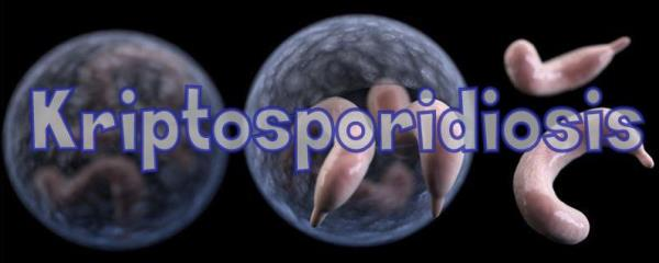 kriptosporidiosis