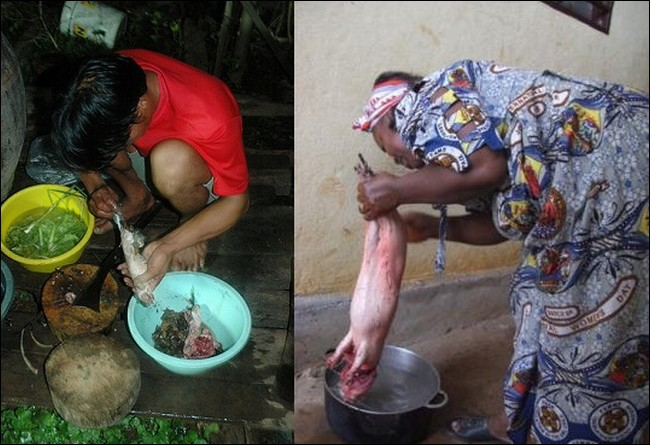 Asian people eat rats | EUTimes.net