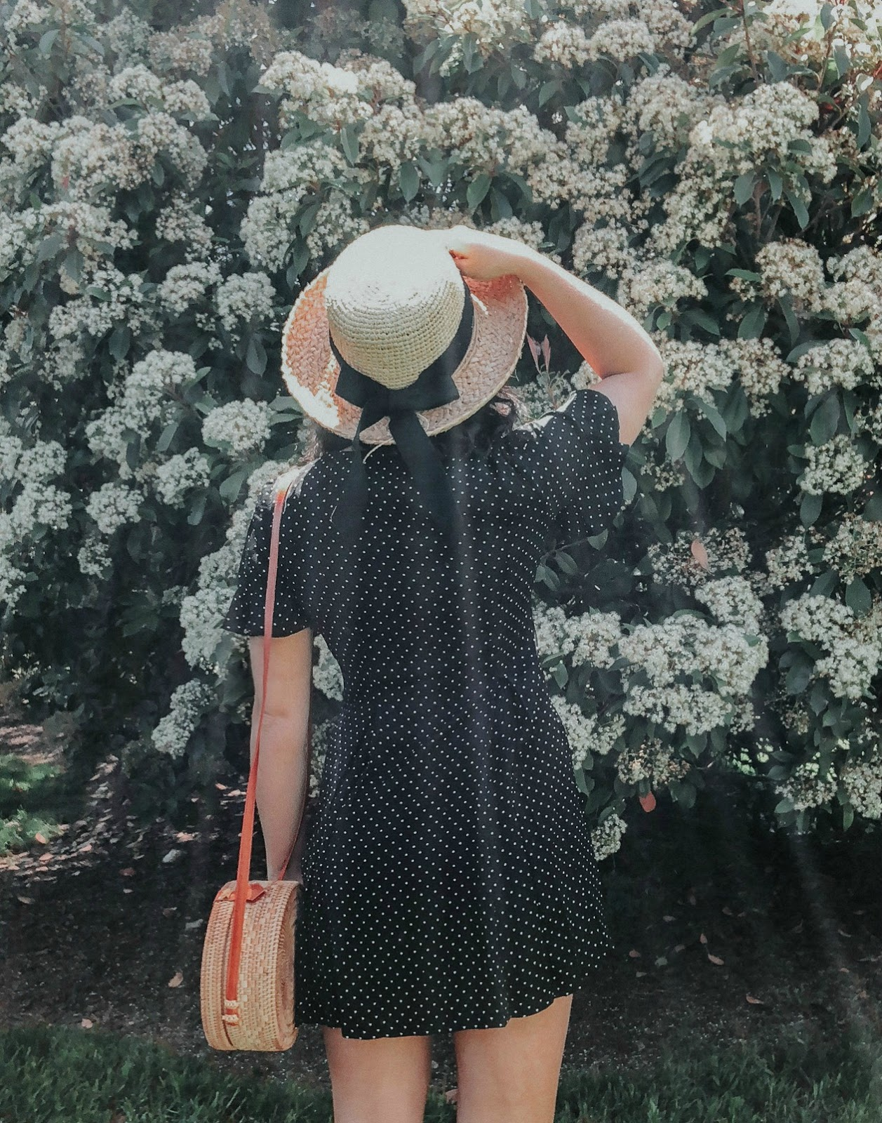 francesca's polka dot dress, french style, rattan bag, free people bag, xo samantha brooke, polka dot dress, ruffle sleeve dress, feminine fashion, life and messy hair, nc blogger, nc photographer