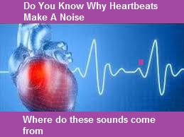 Do You Know Why Heartbeats Make A Noise