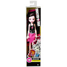 Monster High Draculaura Budget Cheerleader Doll
