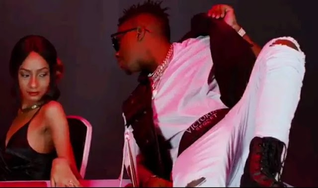 Download Video | Harmonize ft Rayvanny - Paranawe