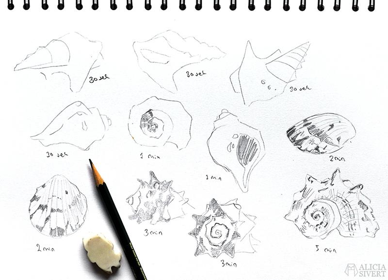 aliciasivert alicia sivert sivertsson art konst skapande kreativitet teckning skiss drawing sketch snäcka shell snäckor shells blyerts grafit diy gör det själv bildlektion teckningslektion lär dig teckna rita teckningsövning övning lektion på tid utmaning teckningsutmaningen i juni