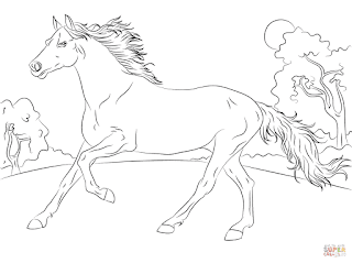 ausmalbilder pferde - malvorlage gratis