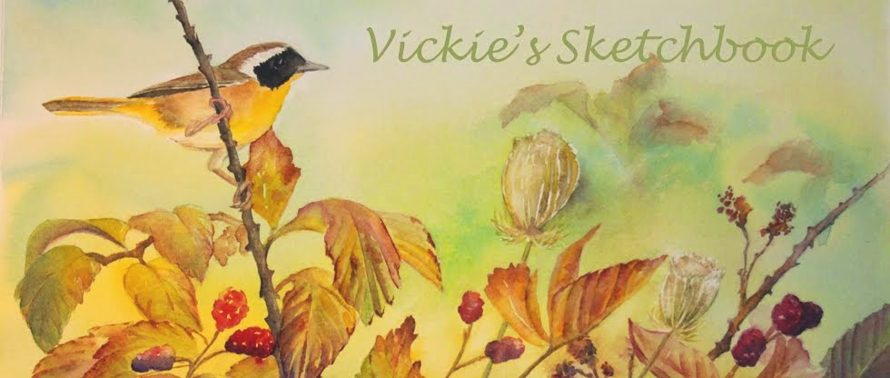 Vickie's Sketchbook