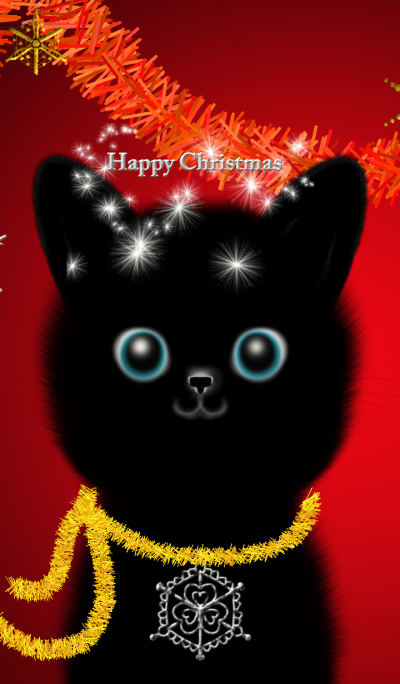 Happy Christmas!Black Cat