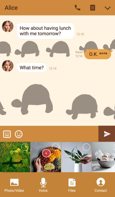 Tortoise simple theme