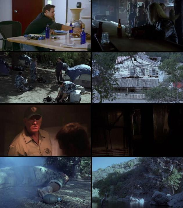 Backwoods 2008 Dual Audio Hindi 480p BluRay