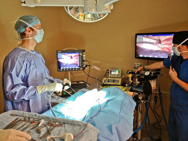 http://herniamanagementindia.com/laparoscopic-surgery/