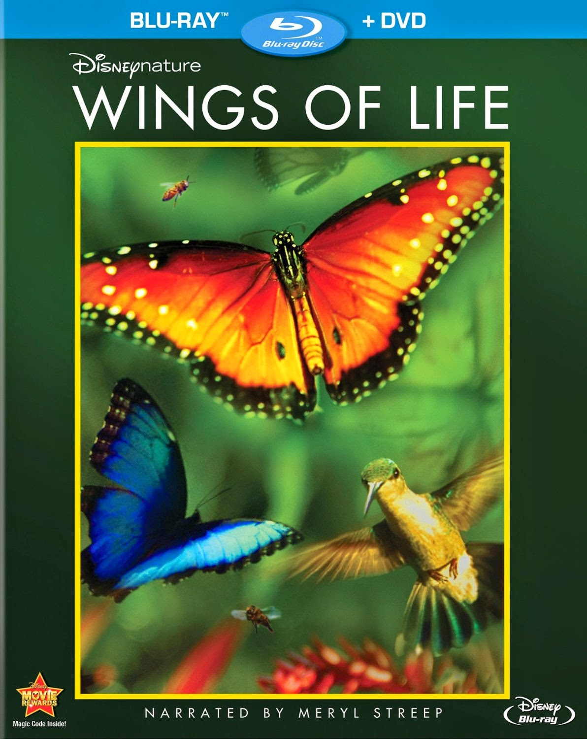 Wings of Life- shown as part of flower theme preschool