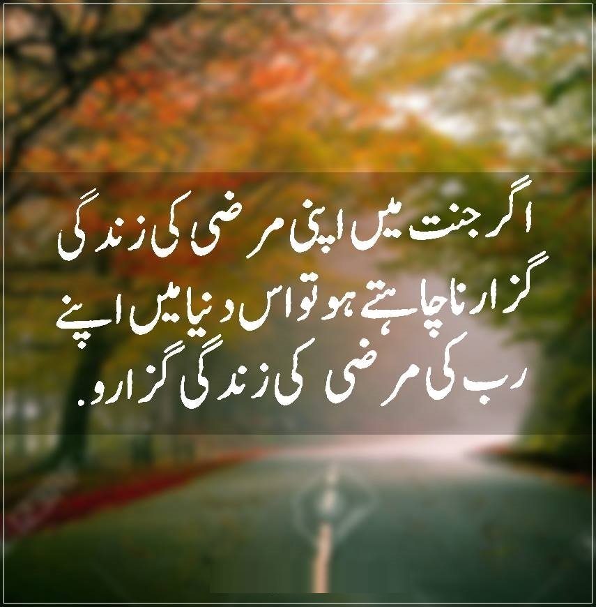 Shayari Urdu Images,urdu shayari with picture,urdu shayari