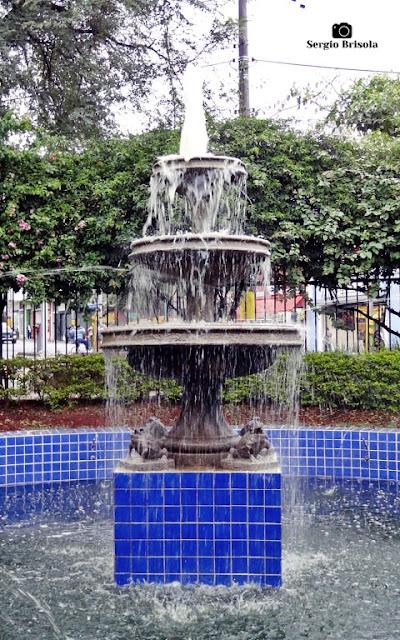 Close-up da Fonte do Cambuci - Bairro do Cambuci - São Paulo