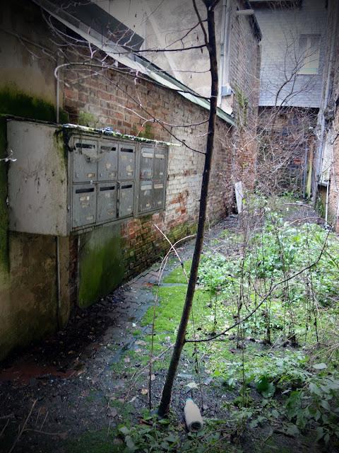 Puis le temps qui passe... et la nature qui reprend ses droits... 6, rue du Capitaine Dreyfus...