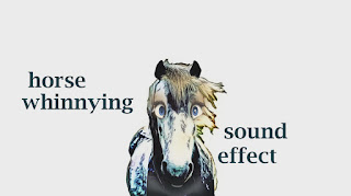 animal horse sounds