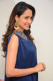 Pragya Jaiswal in beautiful Blue Gown Spicy Latest Pics February 2017 076.JPG
