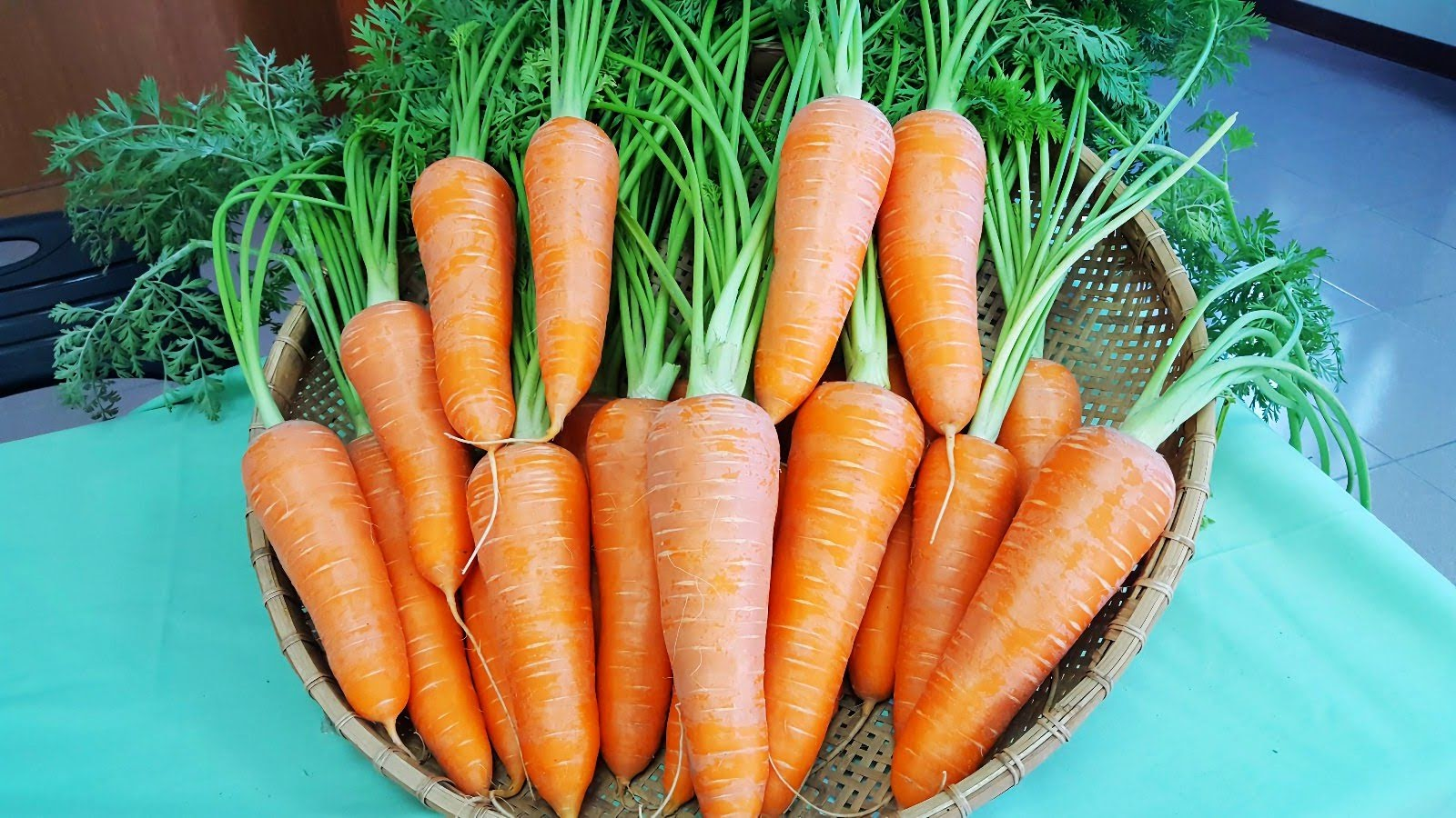 [活動] 2020紅將軍胡蘿蔔節2/16一起拔蘿蔔|業產業文化活動