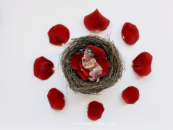 Freebie Friday - Valentines Newborn Digital Background