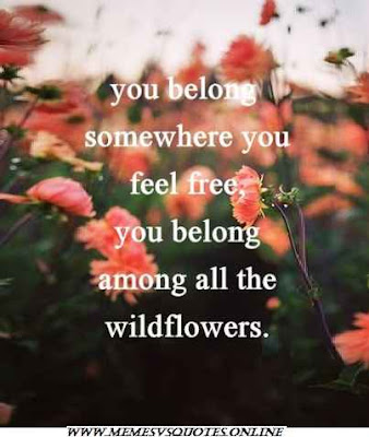 Among all the wild flowers