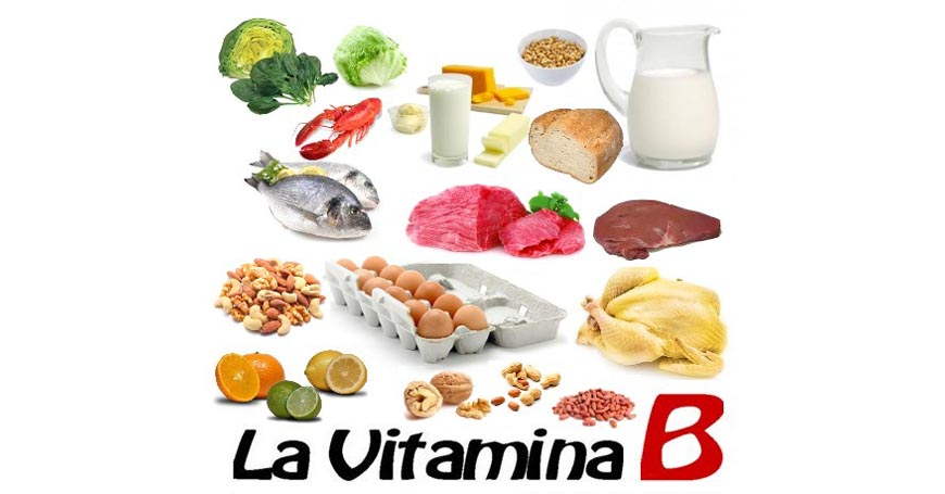 La vitamina b proprieta 39 sintomi carenza fonti e dose for La b b