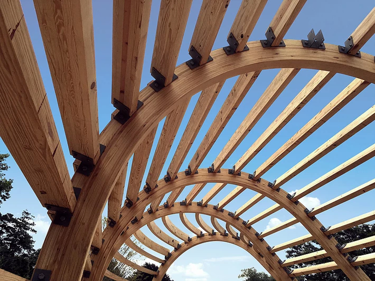 Curved Glulam Beams Create Unique Cocoon House Wood Times Blog