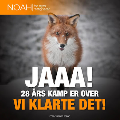 Norway's government pledge to ban fur farming - Rörelse för djurrätt