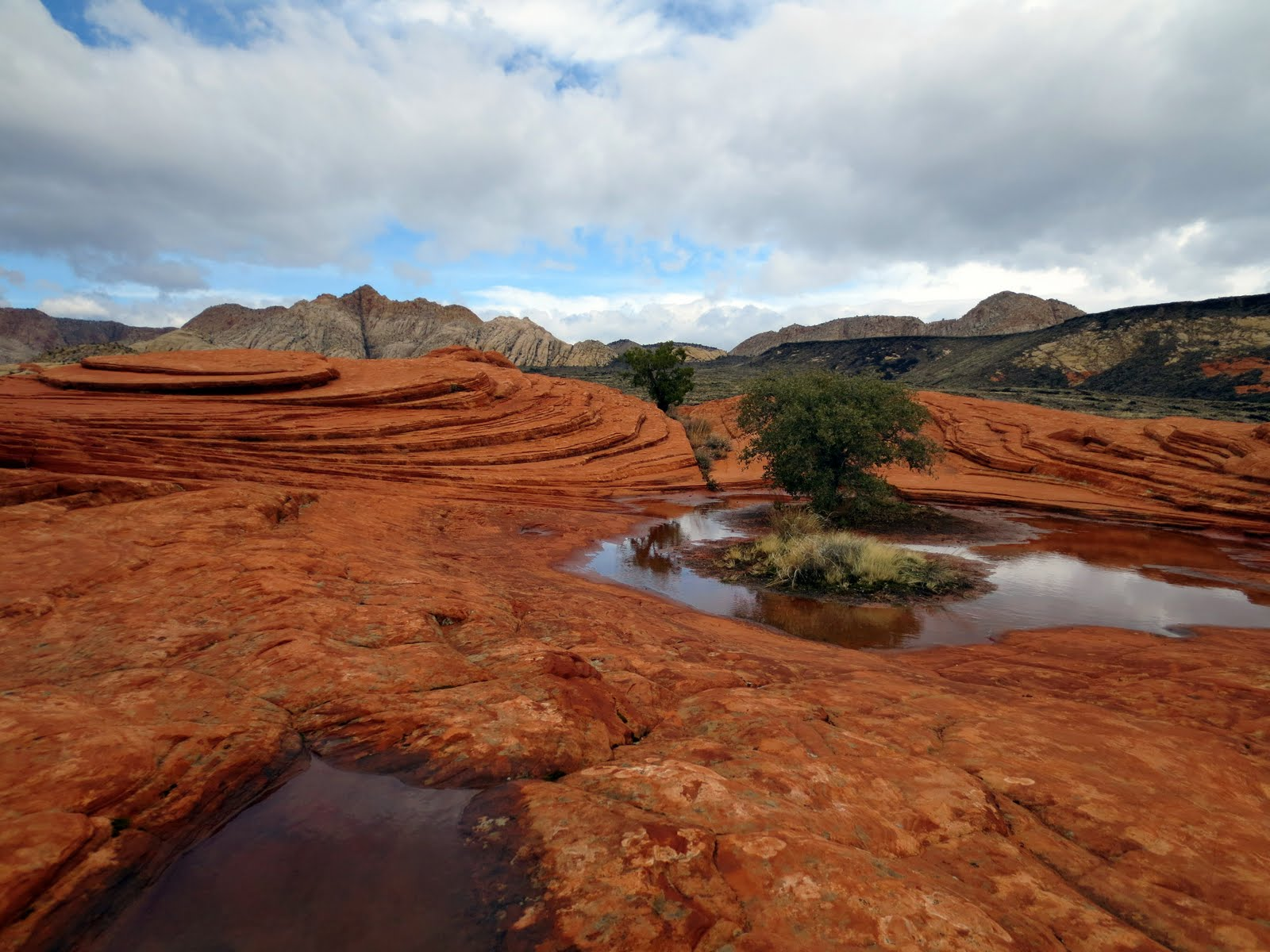 A Look Back – Snow Canyon State Park | Utah State Parks  |Snow Canyon State Park Utah