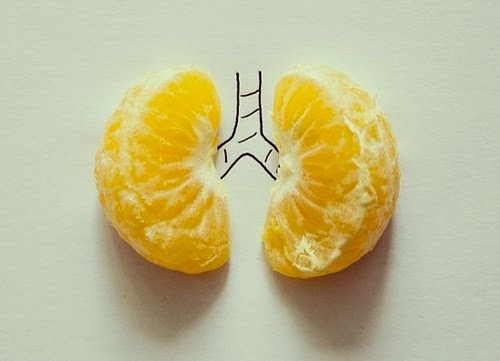 13-Lungs-Illustrator-Javier-Pérez-aka-cintascotch-Design-in-Real-World