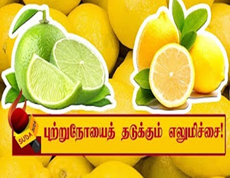 Inika Inika Lemon in Sirapukal