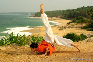 sadhana el sendero del yoga chaturanga dandasana