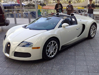 The Bugatti Veyron is regarded by experts as one of the best cars ever produced for looks and performance