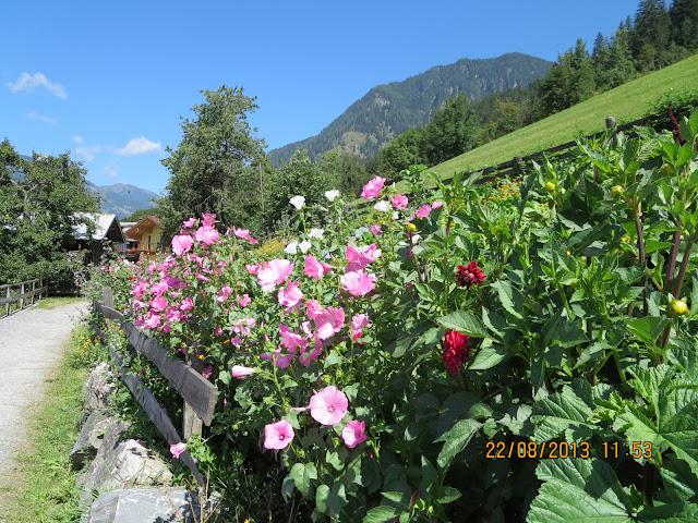 Kukat Bad Gasteinissa