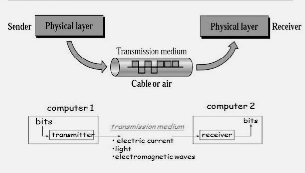 What Is Transmission >> Basic Networking What Are Types Of Transmission Media