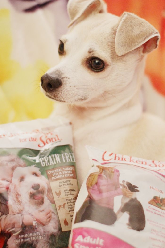 Chicken Soup for the Soul Dog Food Review #MyPetisMyHero