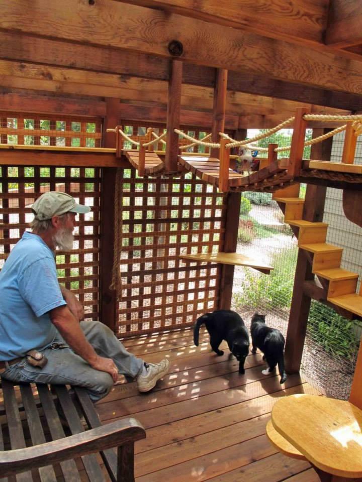 Rumah Kucing Dari Kayu Pallet 40 Desain Rumah Kucing Dari