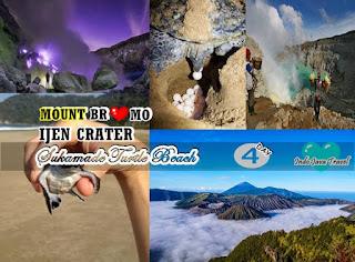 http://www.indojavatravel.com/2018/08/mount-bromo-ijen-crater-sukamade-beach.html