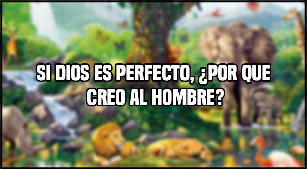 Si Dios es perfecto, ¿Por que creo al hombre?