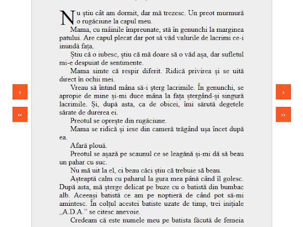 Ada: Un roman pentru suflete sensibile