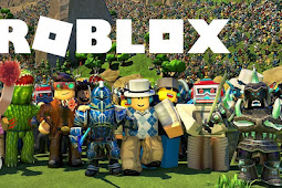 Information about the Roblox Game