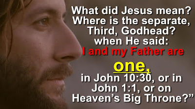 What did Jesus mean? & Where is the separate third Godhead when He said: I and my Father are one, in John 10:30, or in John 1:1, or on Heaven's Big Throne?""