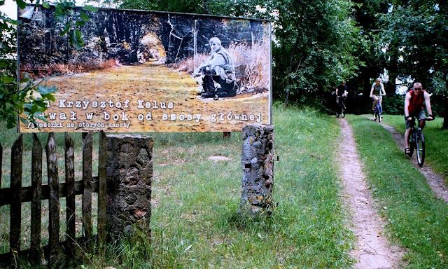 Po co wozić billboardy do lasu?